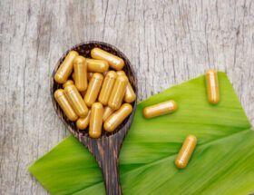 tratamento com ibogaina